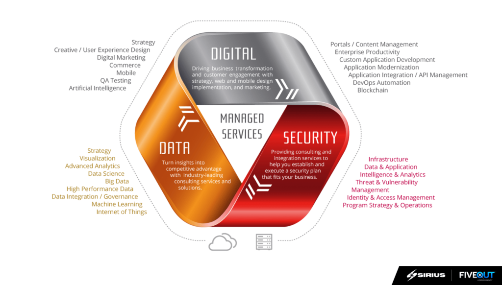 Business Innovation and digital transformation capabilities